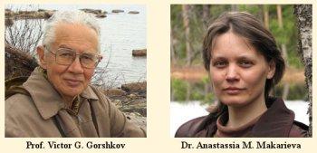 anastassia makarieva y victor gorshkov