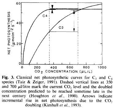 fotosintesis-y-co2-kimball-1993