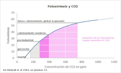 fotosintesis-y-co2
