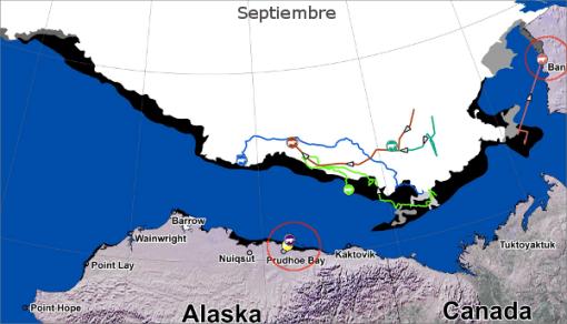 andanzas-osos-polares-septiembre