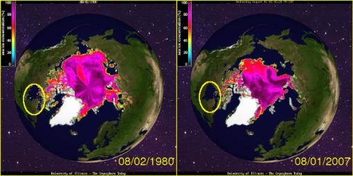oso-polar-negacionista-hielo-agosto