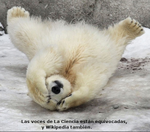 oso-polar-negacionista
