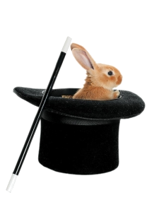 conejo-chistera