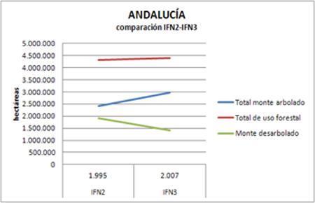 ceratonia-bosque-andalucia