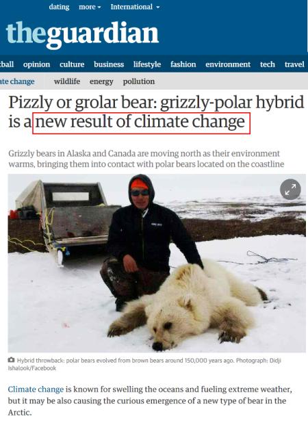 la-mentira-grizzly