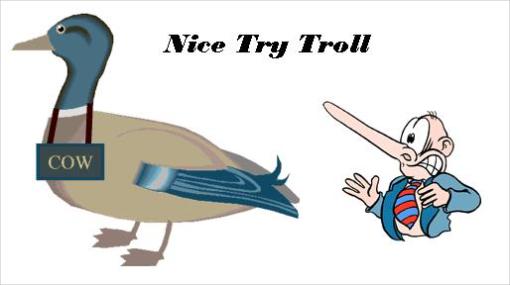 test-del-pato