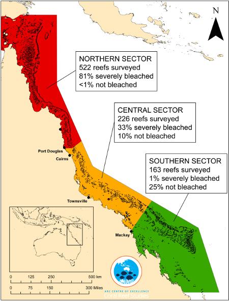 bleaching-coral-australia