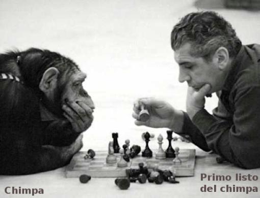 chimpa-y-primo-listo