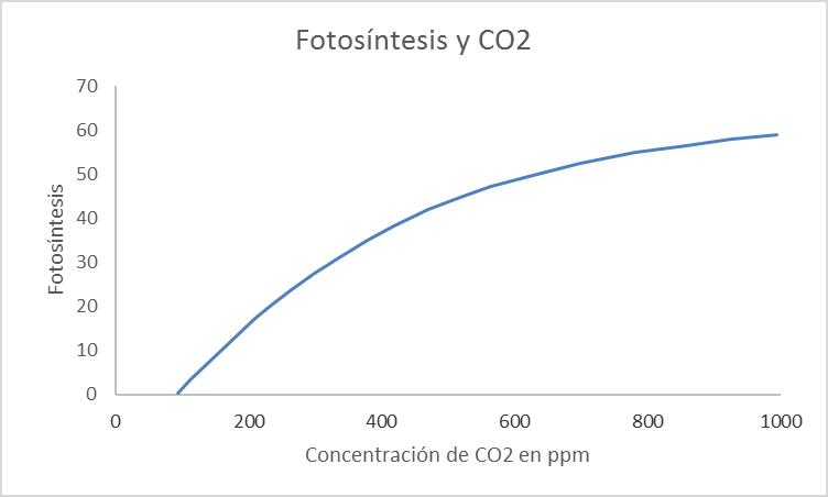 fotosintesis-co2