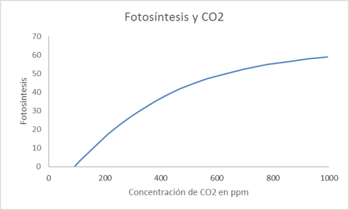 fotosintesis-co2