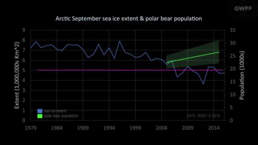 icono-artico-fracasado-osos-polares