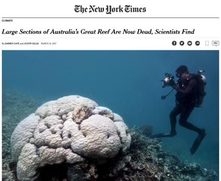 gran-barrera-de-coral-muerto