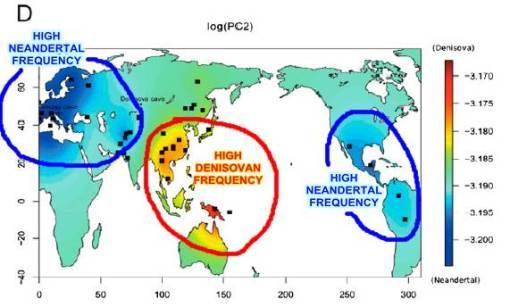 genes-neandertal-denisova