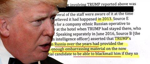 trump-dossier