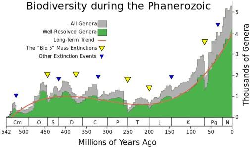phanerozoic_biodiversity-svg